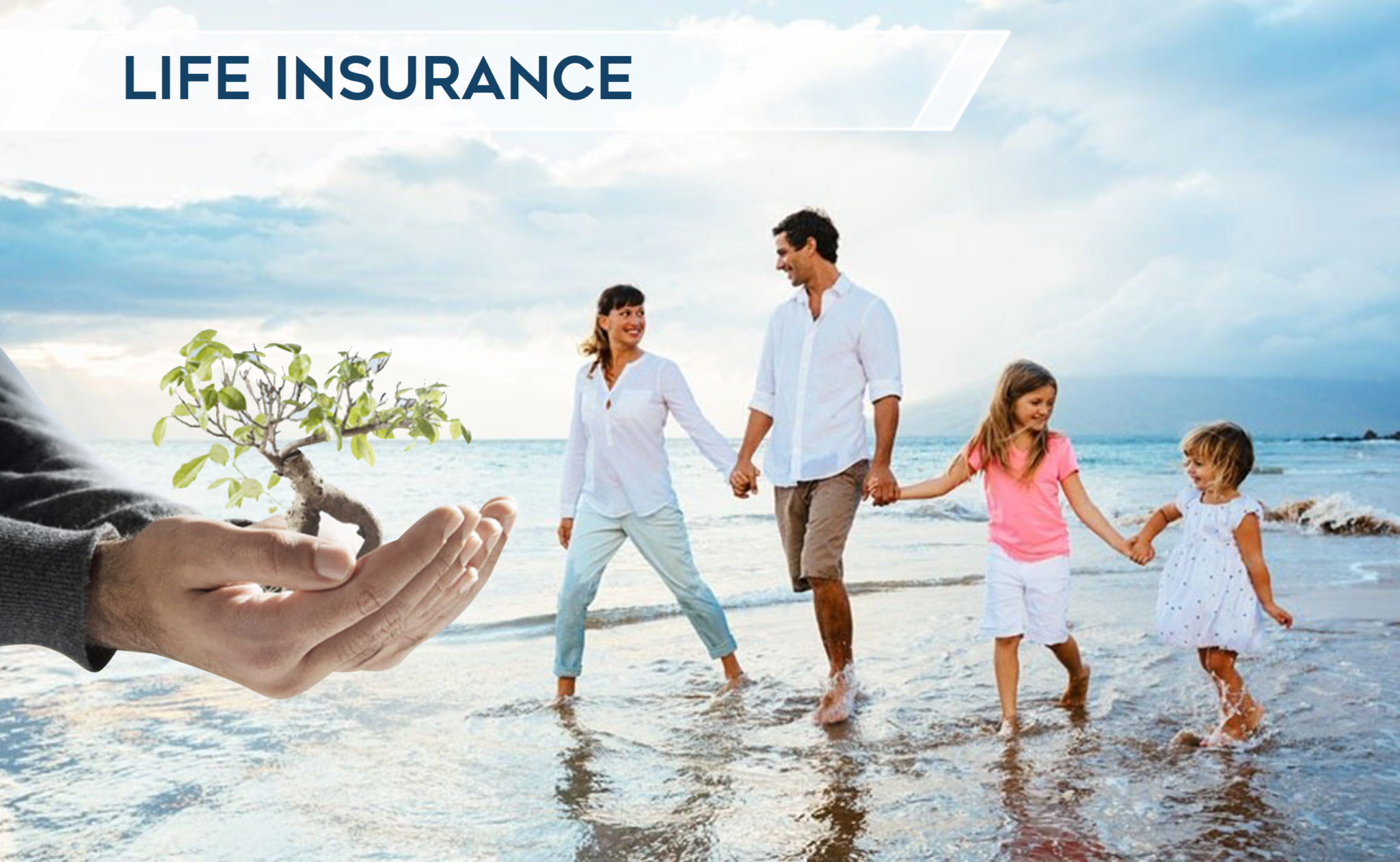 Florida Life Insurance Quotes  Diverse Insurance Group. Want To Divorce My Wife Act Tutoring Programs. Best Termite Control Company. Secondary Education Programs. Paralegal Help With Divorce Papers. Motorsport Sponsorship Proposal Example. Car Accident Concussion Bls Software Engineer. Graphic Design Online Degree. Telephone Conferencing Services