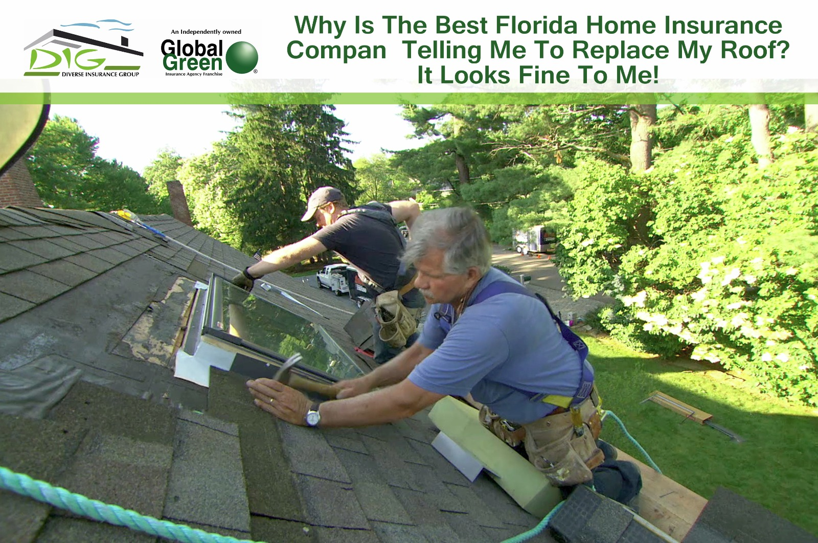 why is the best florida home insurance company telling me to replace your roof it looks fine to. Black Bedroom Furniture Sets. Home Design Ideas